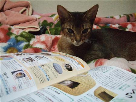 カタログ見ているノワ