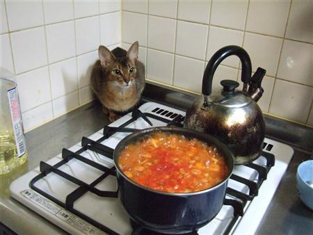 鍋が気になります